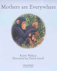 Mothers Everywhere Book Cover Image